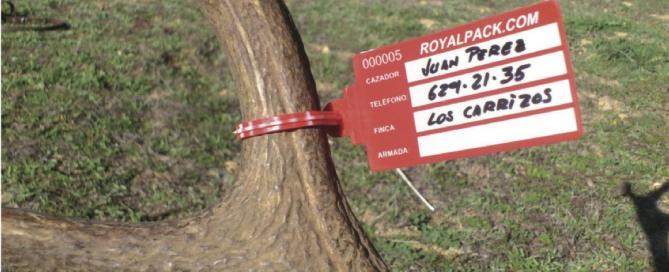 selos de seguranca seguridad